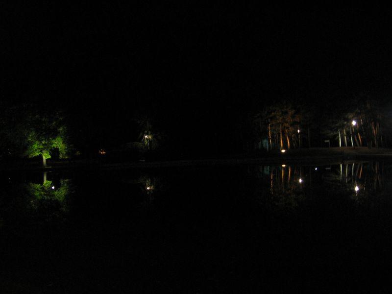20090919 21h53 Eclairage d'arbres, bassin du parc de la Préfecture 043